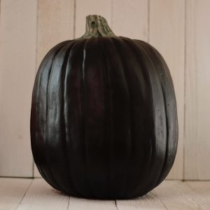 Black Funkin Pumpkin sitting on white boards